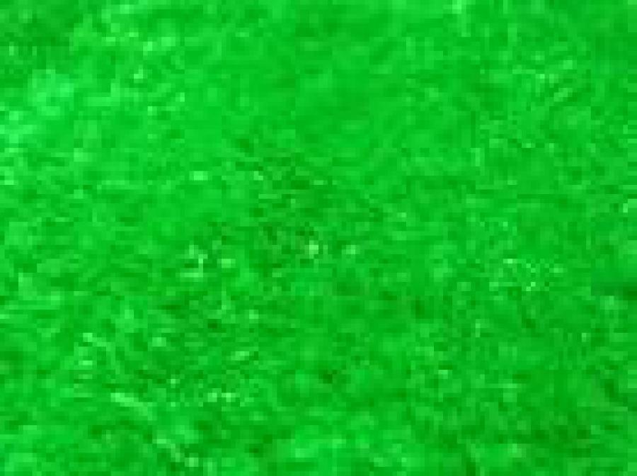 Искусственная трава «ГРИН-ЭКСТРА»